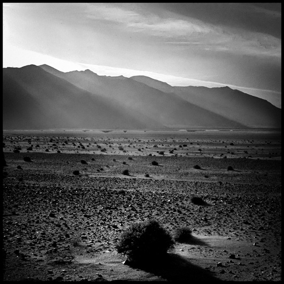 desert_light
