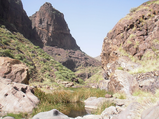 Barranco de la Aldea  110