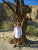 Great Outdoors Hike To The Grottos In Mecca Hills - Kirk (6400)