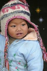 Petit poussin du Népal