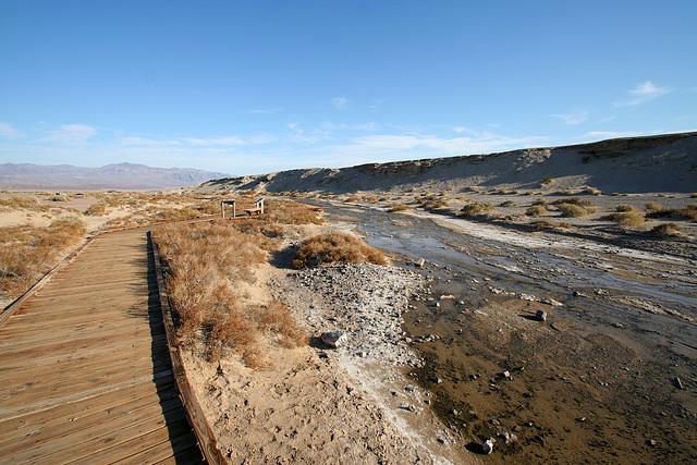 Death Valley Salt Creek (9672)