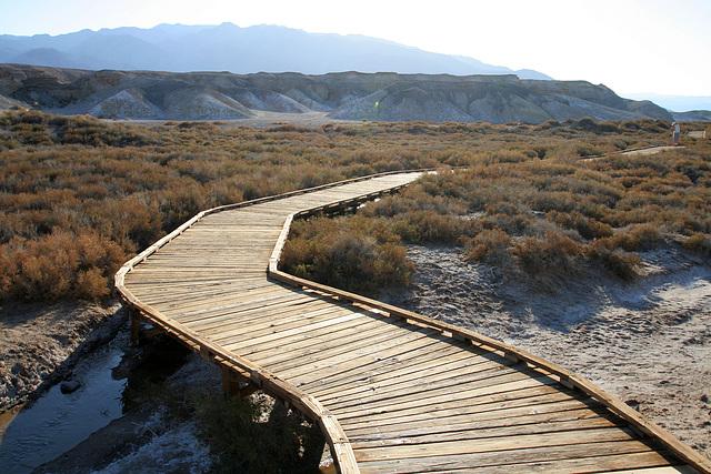 Death Valley Salt Creek (9674)