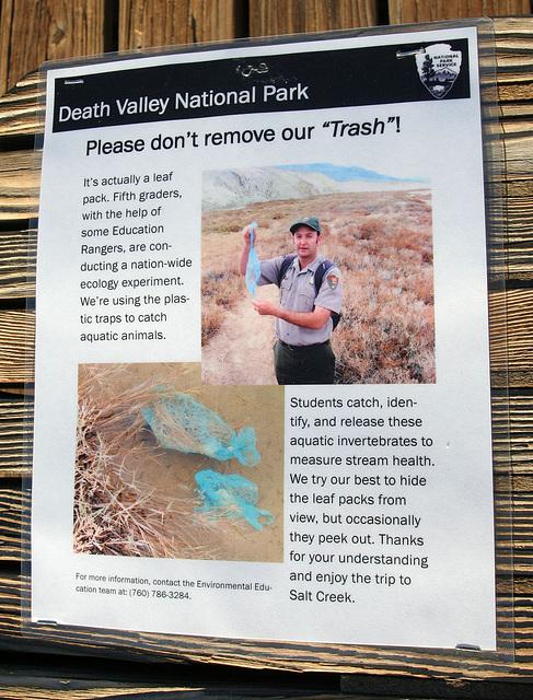 Death Valley Salt Creek Leaf Traps (9675)