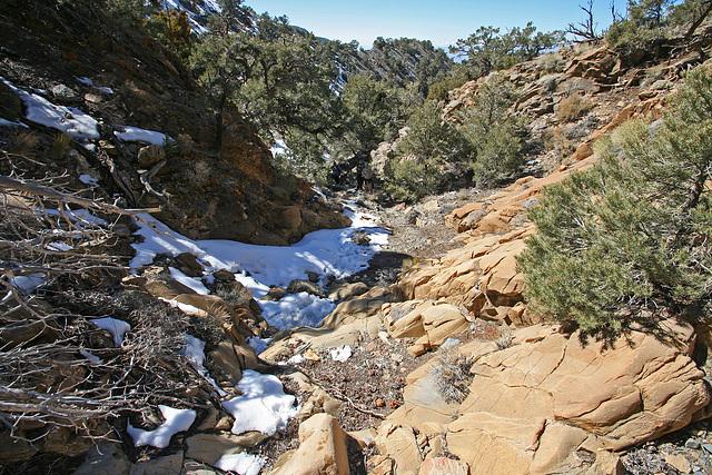 Hiking to Hummingbird Springs (9668)