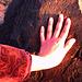 Primera imagen del Tríptico Impronta.