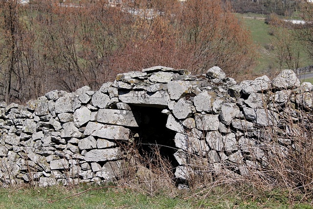 chibote dans un vieux mur