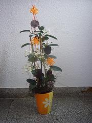 Geburtstagsgeschenk 2010