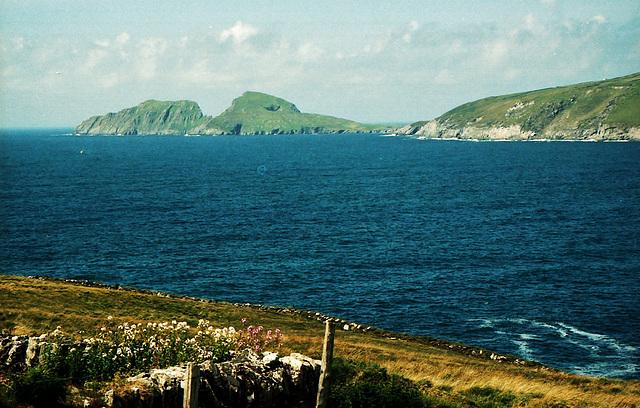 Skellig Bay