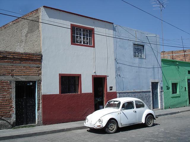 Tequila, Jalisco. Mexico / 23 mars 2011