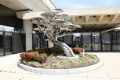 16.PodTrees.RCole.WMATA.NaylorRoad.MD.4April2011