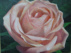 Rose=Rozo_oil on canvas=olee sur tolo_32x41cm(6f)_2010_HO Song