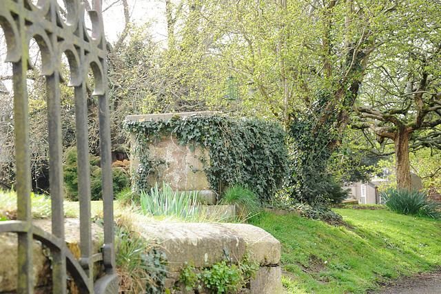 Efeu und Grab in Totnes