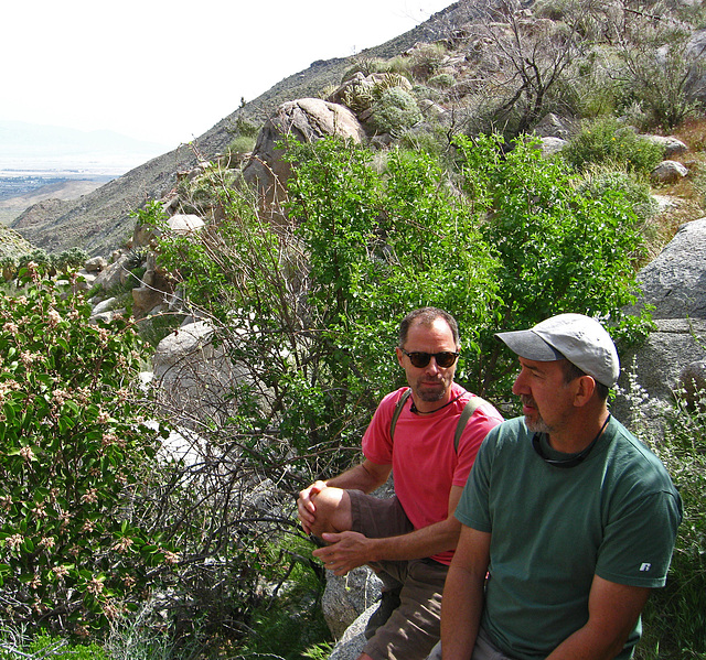 Kirk & Steve above Maidenhair Falls in Anza-Borrego (1654)