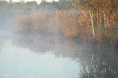 Herbstspiegelung 2