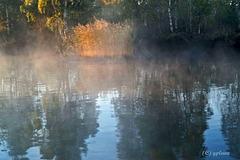 Herbstspiegelung 3
