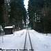 JHMD Linka 228 in the Snow, Picture 3, Edited Version, Sudkuv Dul, Kraj Vysocina, Bohemia (CZ), 2011