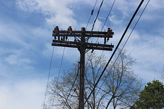 HELCO 4.8kV - East Hartford, CT
