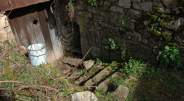 Accès à la cave et tunnel secret