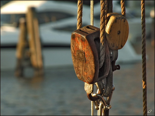 maritimes detail#