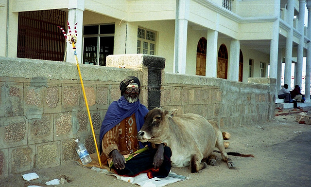 India: A holy man and his cow
