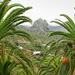Der Roque de Cano auf der Seite von Tamargada. Auf der anderen Seite liegt Vallehermoso. ©UdoSm