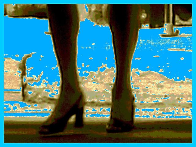 Montréal, Québec. CANADA / 1er juin 2011 - Sepia bleuté en postérisation