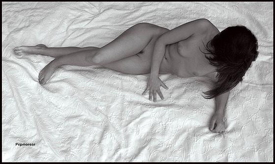Desnudo brodado sobre tela