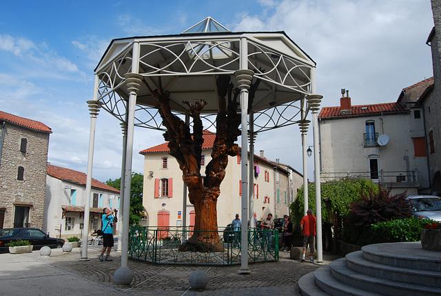 L'arbre sculpté du Caylar...sur le Larzac
