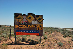 Sign for food ahead...kangaroo, camel and emu! Desert Australia