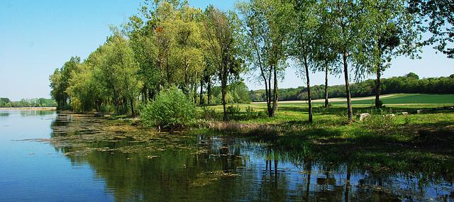 Paisible rivage du Loir