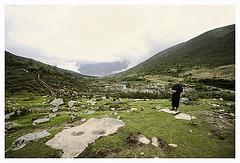 Mugecuo National Park - just nature