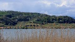Le Mont-Vully et le lac de Morat