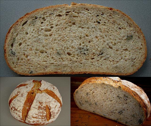 WGB Challenge # 7: Transitional Multigrain Hearth Bread