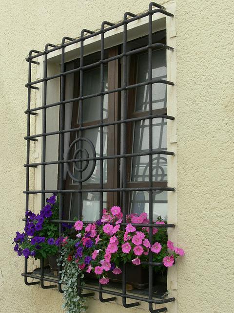 Fenster am Alten Rathaus in Weiden