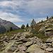 über Stock und Stein auf 2400 m