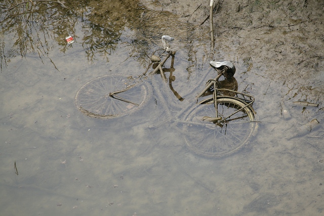 swimcycle