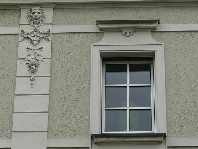 Fenster in Weiden