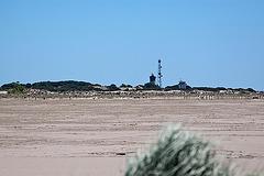20110528 3966RAfw Strand l'Espiguette [Le Grau du Roi]