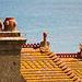 Gargoyle auf dem Dach