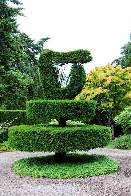 Shamrock Garden - Harfe