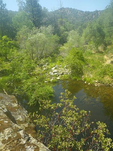 Chowchilla River (0215)