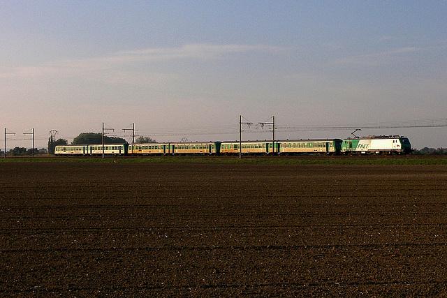 Trois verts pour la Roumanie