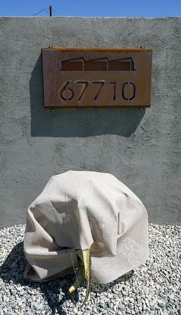 Lautner Motel (0105)