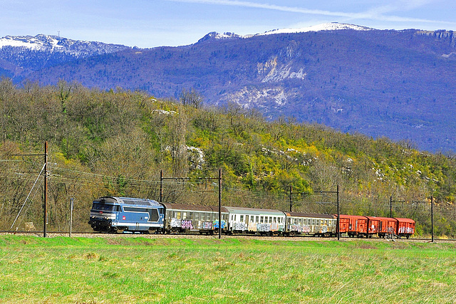 67300 bleue et son train parc