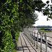 IMG 1066 Strandweg