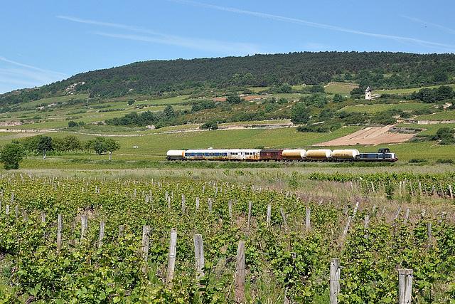 Désherbeur en Bourgogne
