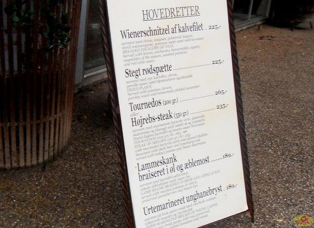 2011-07-24 037 Kopenhago
