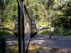 Darjeeling Toy Train..climbing the Himalaya.