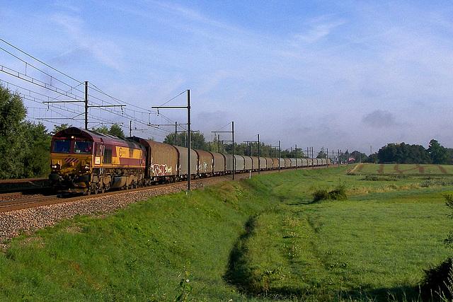 Class 66 en plaine de Bresse