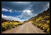 Carretera_Austral